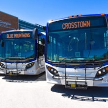 Collingwood Transit