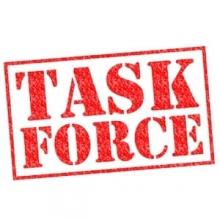 Task Force (1)